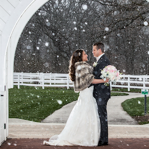 Danada House Winter Wedding